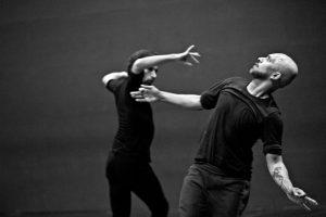 TOROBAKA Danza y Cultura